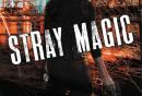 Stray Magic by Kelly Meding